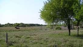 Oportunidad Vendo Cmpo 107 hct.Agricola Ganadero Z/Va.Angela