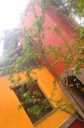Alquilo casa en el Bosque Peralta Ramos