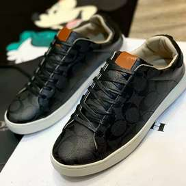 Sneakers coach