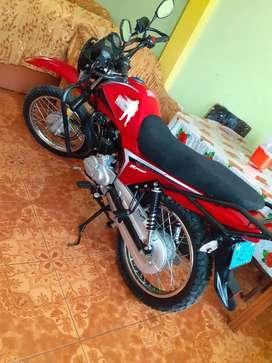 Vendo moto zongshen