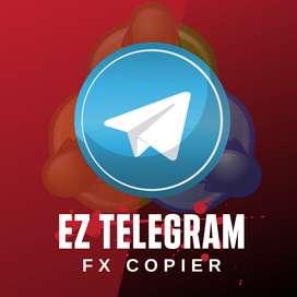 Software Copiador de Señales de Telegram a Metatrader