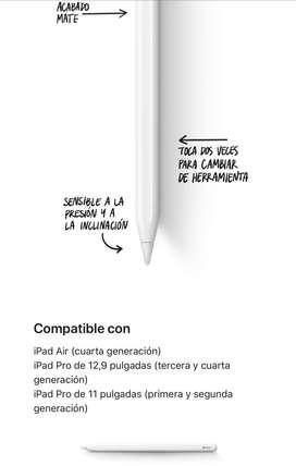 Apple Pencil (2da Generación) Blanco