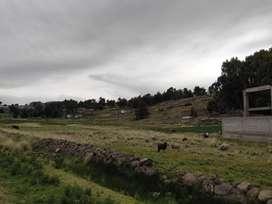 Vendo TERRENO PLANO de 1,820 m2, en Chucuito (Chojochojo) - Puno