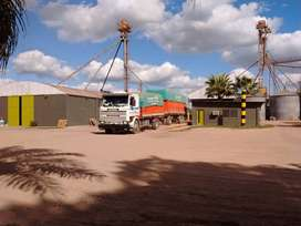 Vendo camión Scania 113 360