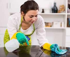 servicio domestico- limpieza