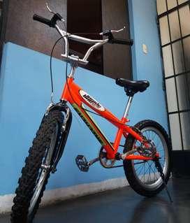 """Bicicleta Aro 20"""""""