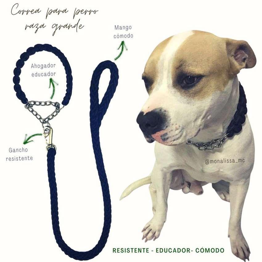 Correa para perro 0