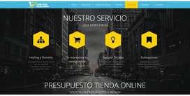 Diseño de Paginas Web para Ventas On-Line