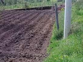 Venta de terreno en el sector el Morlan de la parroquia de Imantag.