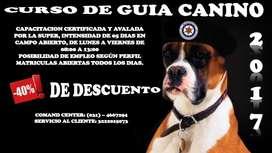 CURSO Y CERTIFICACIÓN GUÍA CANINO