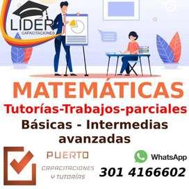 Profesor Matemáticas particular Tunja ¡mejora TUS calificaciones!.