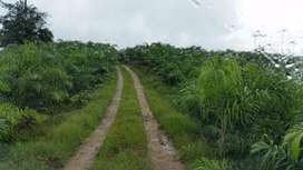VENDO FINCA AGRICOLA 304 Ha. PEDRO V. MALDONADO CARMELO