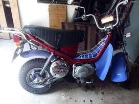 vendo moto chappy antigua, por que la uso.