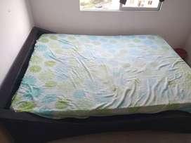 Cama doble + colchón ortopédico
