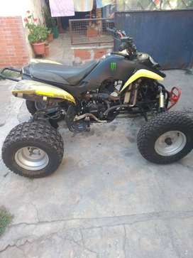 Panther wr 250