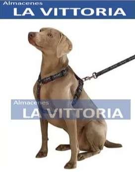 Correa y Pechera para Perros Grandes