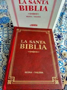 Biblia Reina Valera - Arquetipo Editorial, Letra Grande.