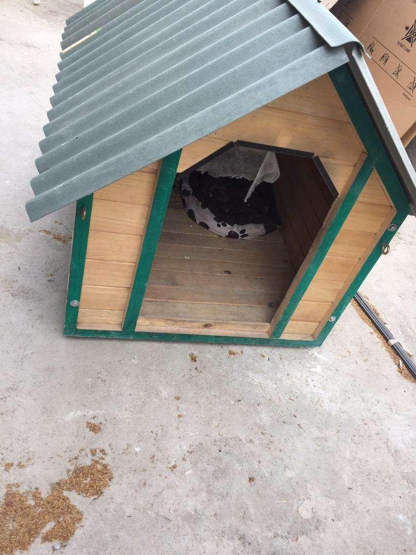 Casa para perro raza grande 0