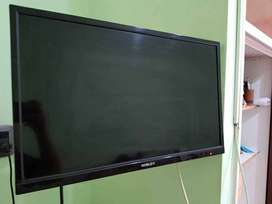 "tv Noblex led 24"" con soporte articulado de pared"