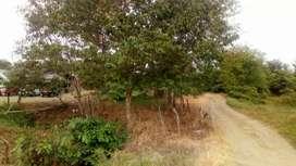 Terreno en Tosagua