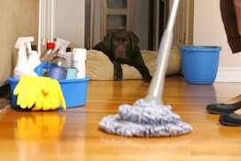 Limpieza de casa etc.