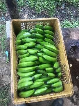 Platano y banano a domicilio