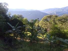 Lote en la Vega Cundinamarca