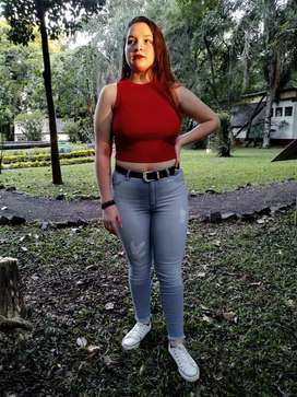 Musculosa Morley