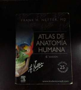 Atlas de Anatomía Humana Netter - 6ª Edición