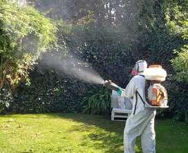 Fumigación certificada fumigaciones cucarachas pulgas wilde