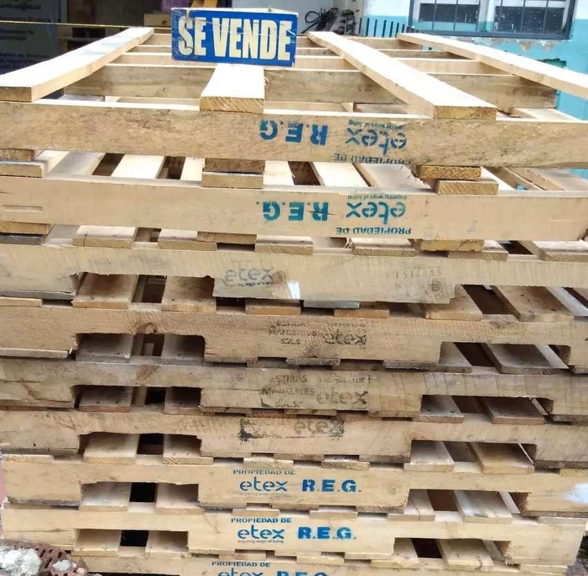 Estibas de madera de 242 x 122 0