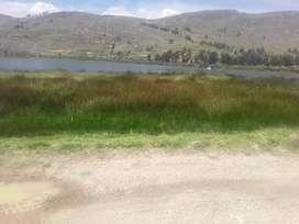 Ocasión vendo terreno por la Laguna de Paca