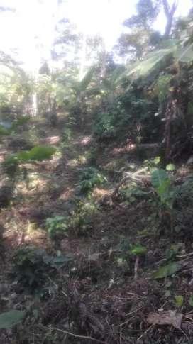 Oferta:Se vende o permuta lote ubicado vía fusa viota Cundinamarca.