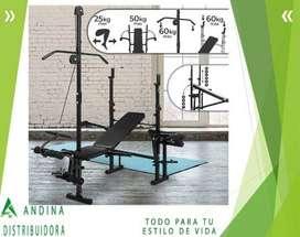 Banco Multifuerza Incluye Predicador Polea Alta, Gym, Ejercicio