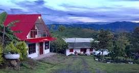 Vendo finca cafetera en Saladoblanco Huila