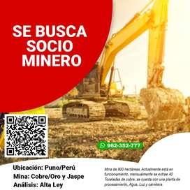 Mina Artesanal busca Socio Inversionista