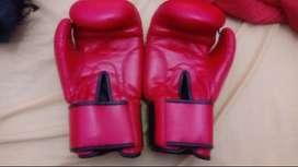 Vendo bolsa y guantes de boxeo
