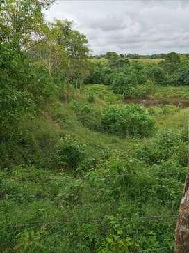Venta de Finca de 3 hectareas fertiles en Turbaco Bolivar