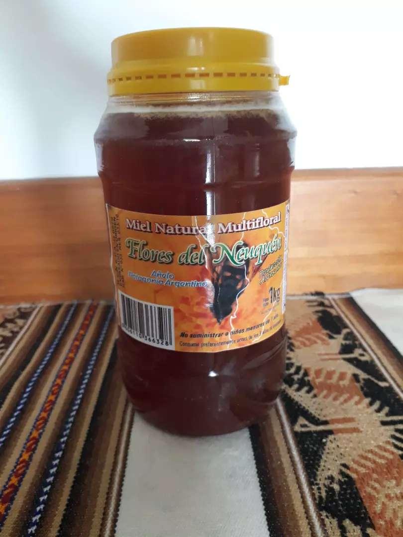 Miel pura de abejas origen Neuquén 1kg. 0