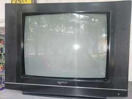 "TV SIMPLY de 21 ""con control"
