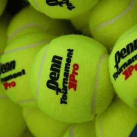 Pelotas PENN TORUNAMENT PRO sueltas tenis/padel
