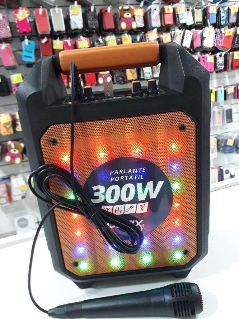 Parlante Karaoke 300w 0