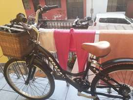 Vendo una Bicicleta Goliat para Damas.