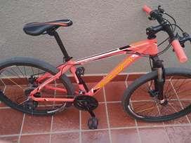 Vendo bicicleta Newton . 27 velocidades