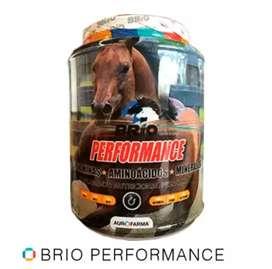 Se vende concentrado para caballo y vitamina