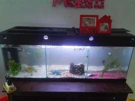 Vendo pecera muy completa con 2 filtroS termostato luces y más de 20 peces