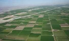 Vendo Parcela en Irrigacion Majes,