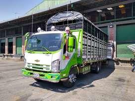 Camion frr modelo 2015 en perfectas condiciones