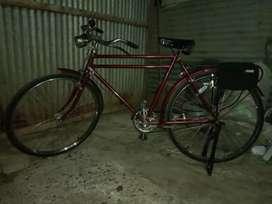 Bicicleta panadera original