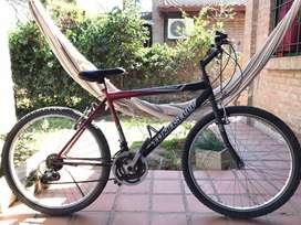 Bicicleta Tomaselli rodado 26 usada